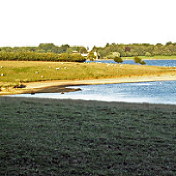 rutland water uk england