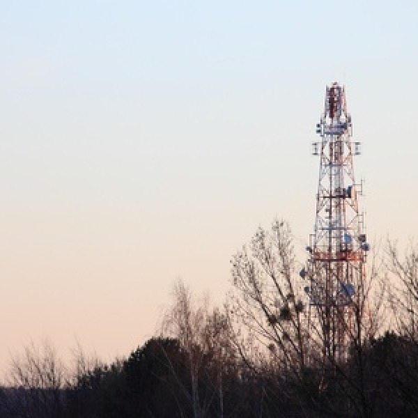 mobile network mast among trees