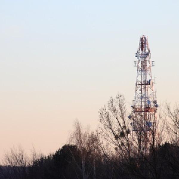 mobile_network_mast_among_trees