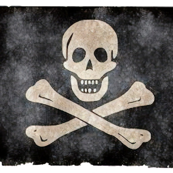pirate internet piracy flag