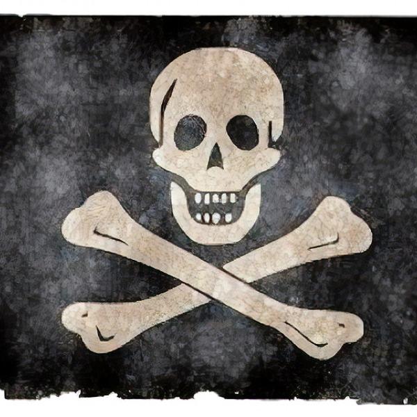 pirate internet piracy flag
