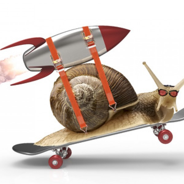 snail_rocket