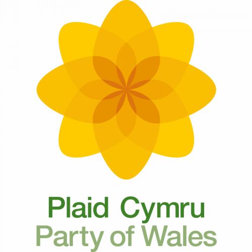Image result for plaid cymru logo