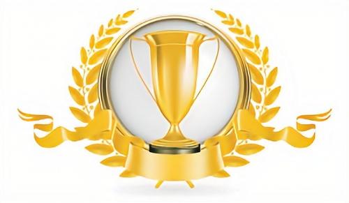 best isp gold award