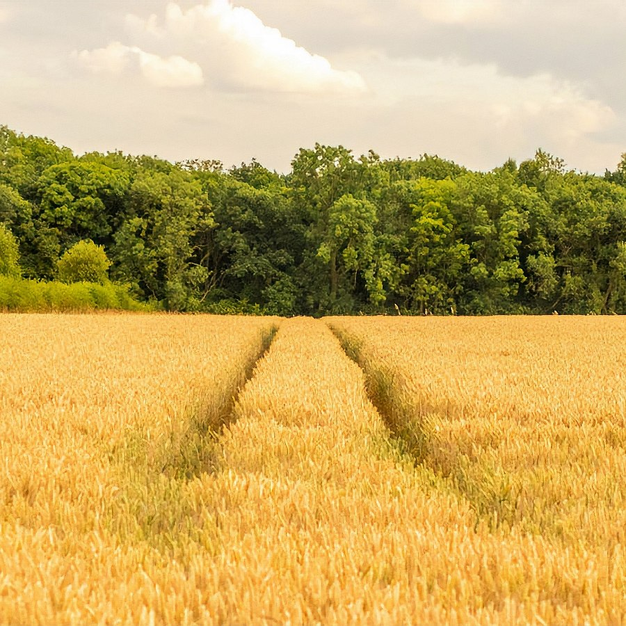 farmers_field_broadband_and_mobile