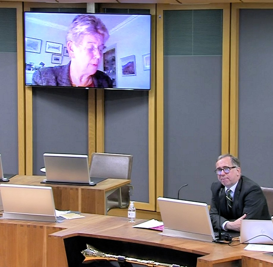 welsh_parliament_plenary_13th_oct_2020_broadband_fail