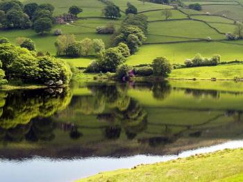 rural-countryside-uk